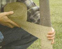 Crinkle Paper Tree Wrap