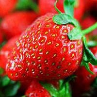 Strawberry - Robinson