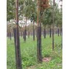 "36"" Tree Bark Protectors"