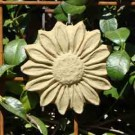 Spring Sunflower Plaque