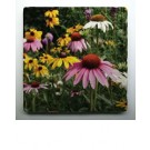 Coasters - Echinacea Flower Garden - Set of 4