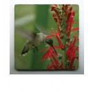 Coasters - Hummingbird - Set of 4
