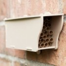 Mason Bee Starter Home Kit