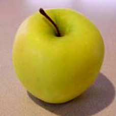 Apple Tree - Ginger Gold
