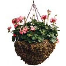Hanging Moss Basket - 14 in.