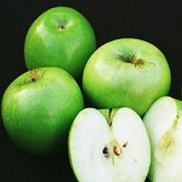 Apple Tree - Granny Smith